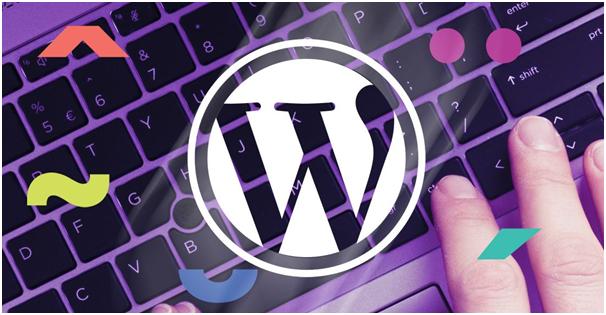 طراحی سایت وردپرسی ارزان قیمت در ایران